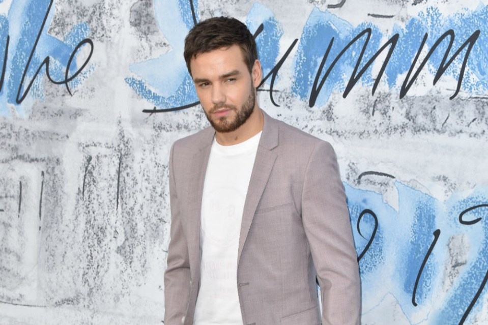 Liam Payne - Investing In Depression Treatment From Psychedelic